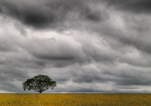 cloudy brunel writer
